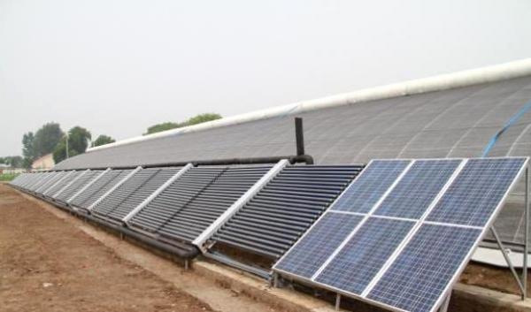 太阳能温室大棚6.jpg